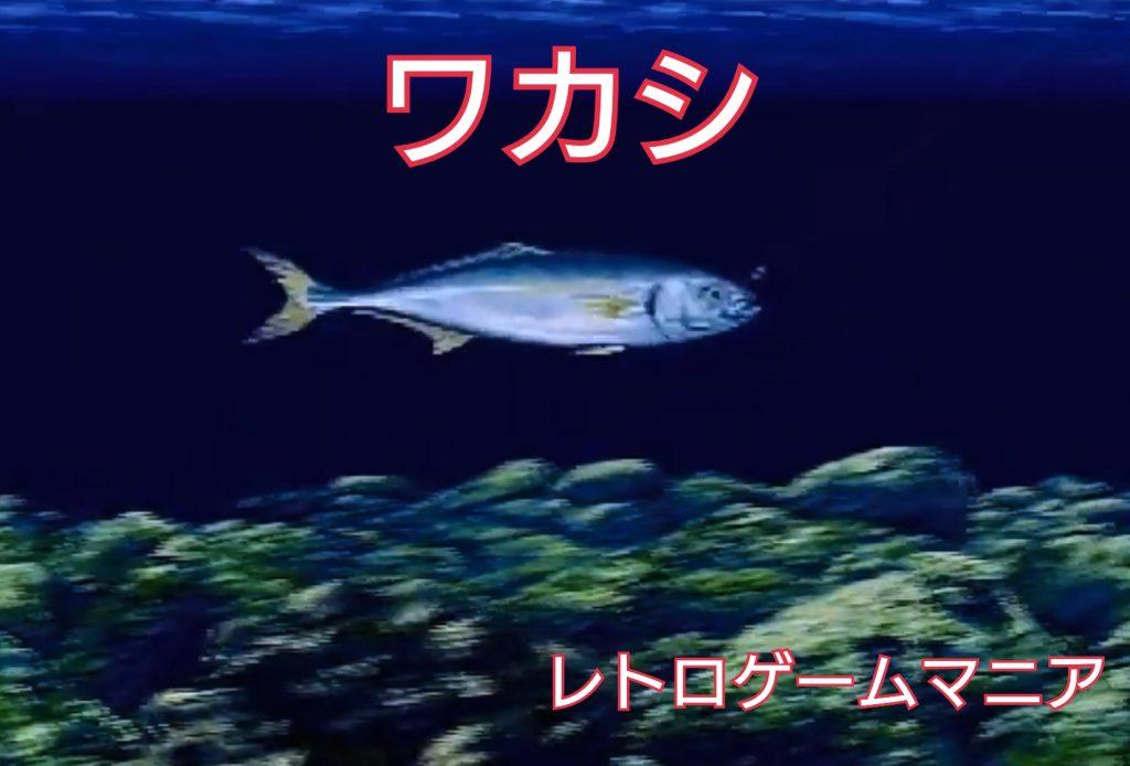【SFC海のぬし釣り・攻略】や行・わ行の魚/釣り方&データ(4種)